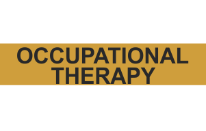 OCCUPATIONAL THERAPY CASA